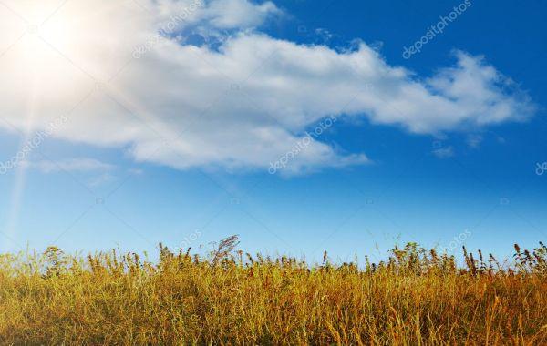 autumn landscape in good warm weather