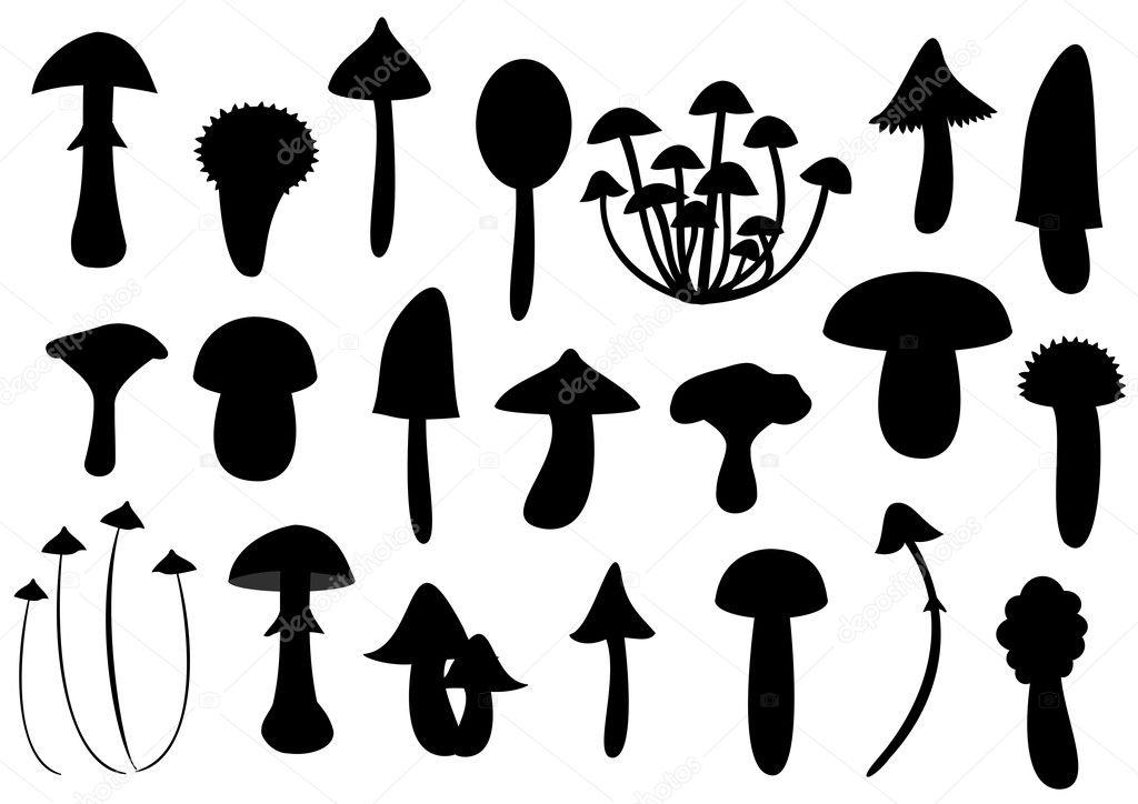 Mushroom silhouettes — Stock Vector © zuzanaa #3020941