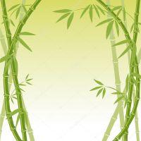 Bamboo background  Stock Vector  yo-ichi #3009907
