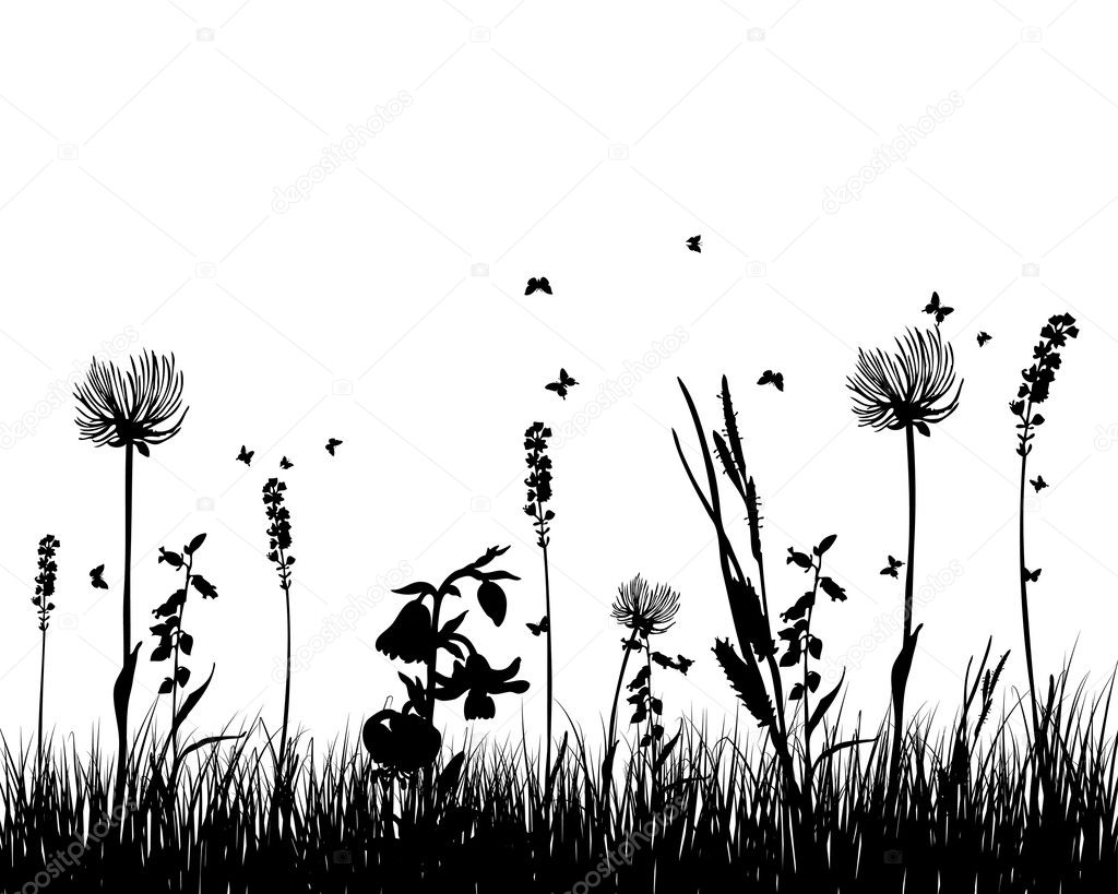 Grass silhouettes  Stock Vector  angelp 3415919
