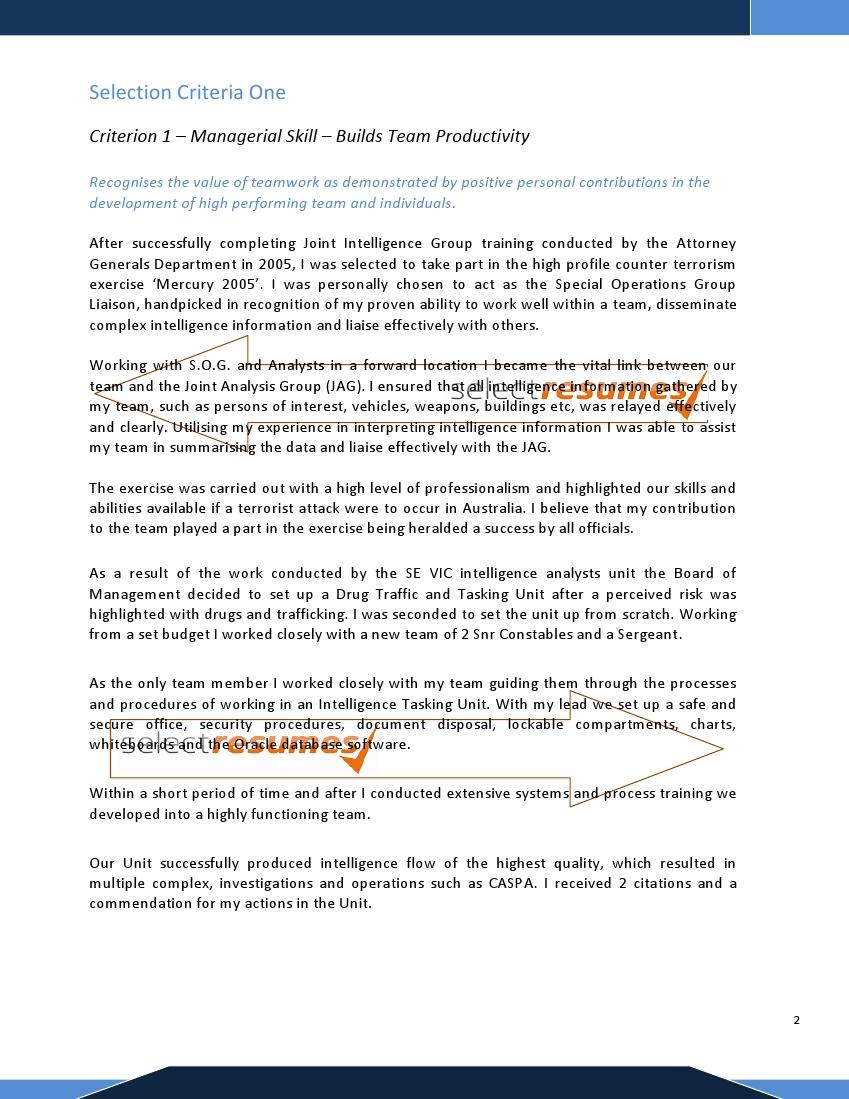 We Can Help With Professional Resume Writing Resume Templates Diamond Geo  Engineering Services Online Resume Writing