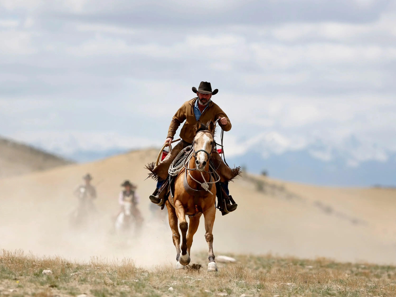 wrangler, montana, cowboy