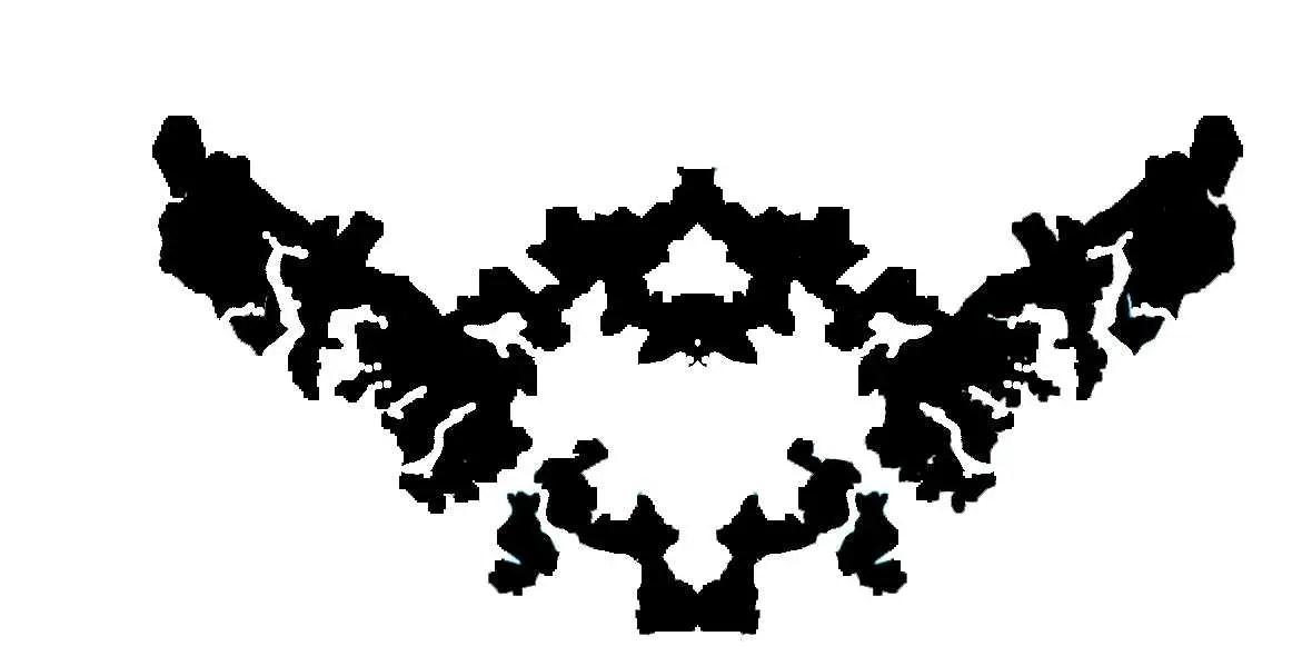 QUIZ: Gerrymandered US Congressional District Or Rorschach