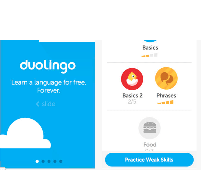 Duolingo to give you another language in a hurry