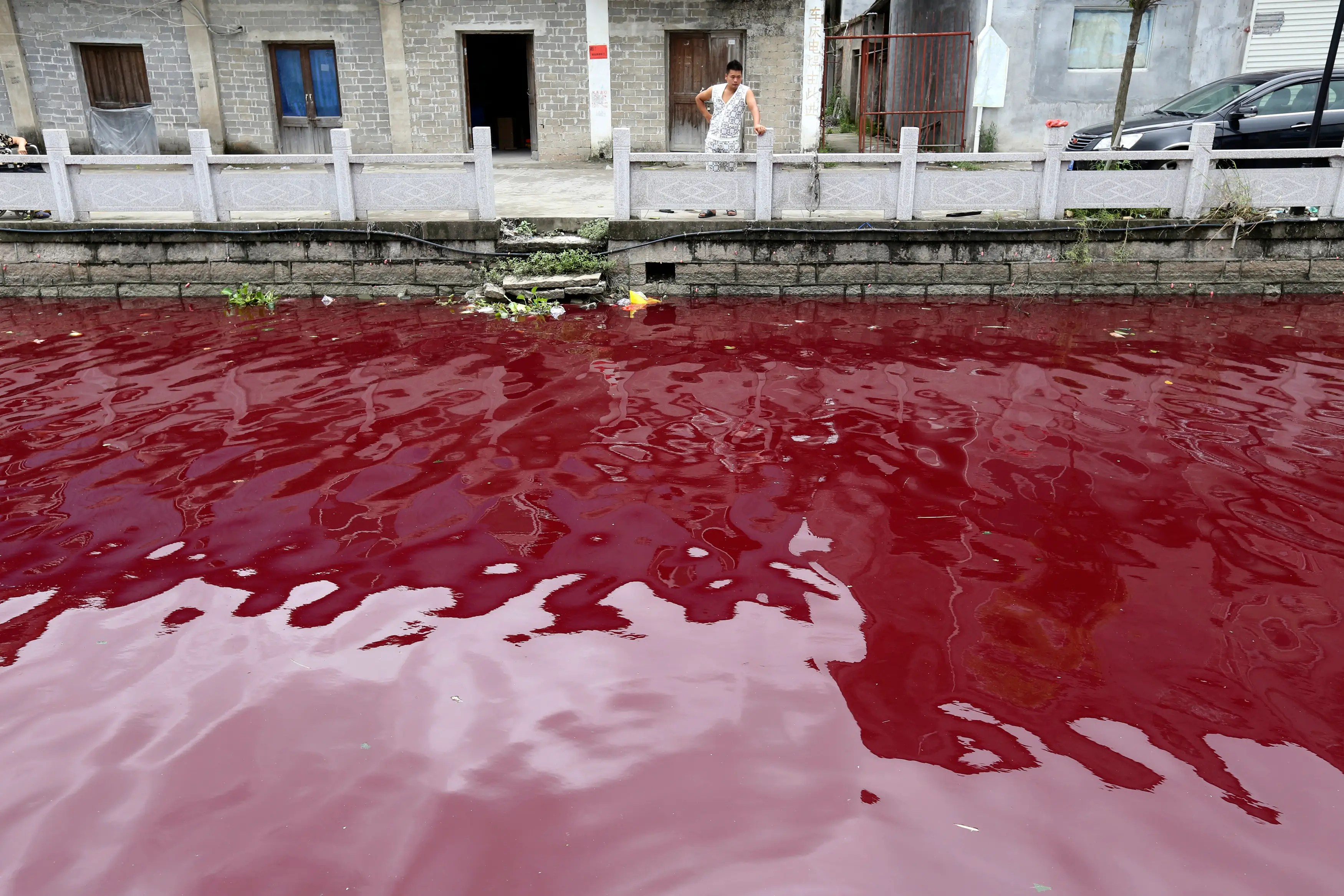 Residents of Wenzhou, China, woke one July morning to find that a river had turned red as blood due to pollution in the area.