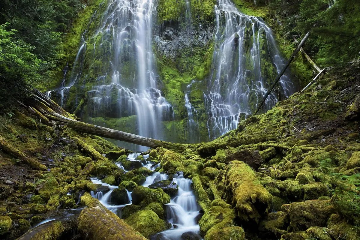 This is one of the winners from the Smithsonian's Wilderness Forever photography competition. Proxy Falls cascades down to a moss-covered forest in the Three Sisters Wilderness in Oregon. The Three Sisters are a series of three volcanoes.