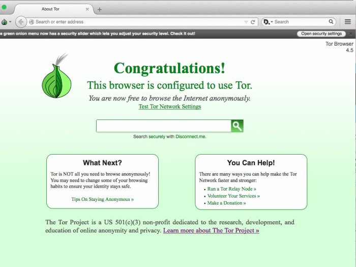 Ta-da! You're now on Tor!