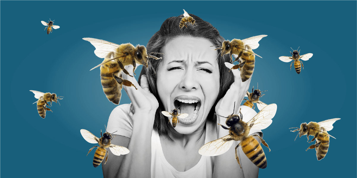 The Worst Place To Be Stung By A Bee Business Insider