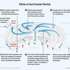 Hurricane Formation Diagram Dodge Durango Trailer Wiring Florence How Hurricanes Form Business Insider