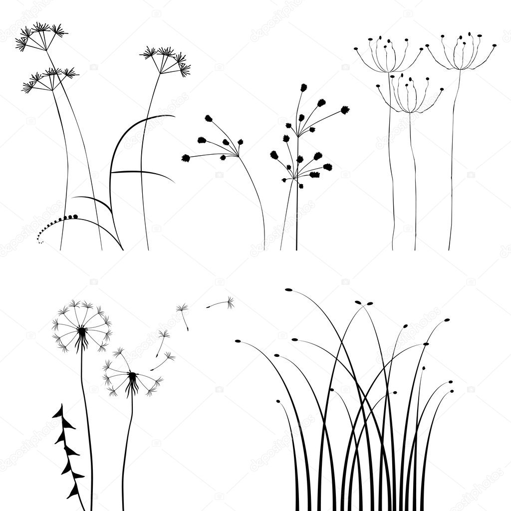 Collection, for designers, plant vector — Stock Vector