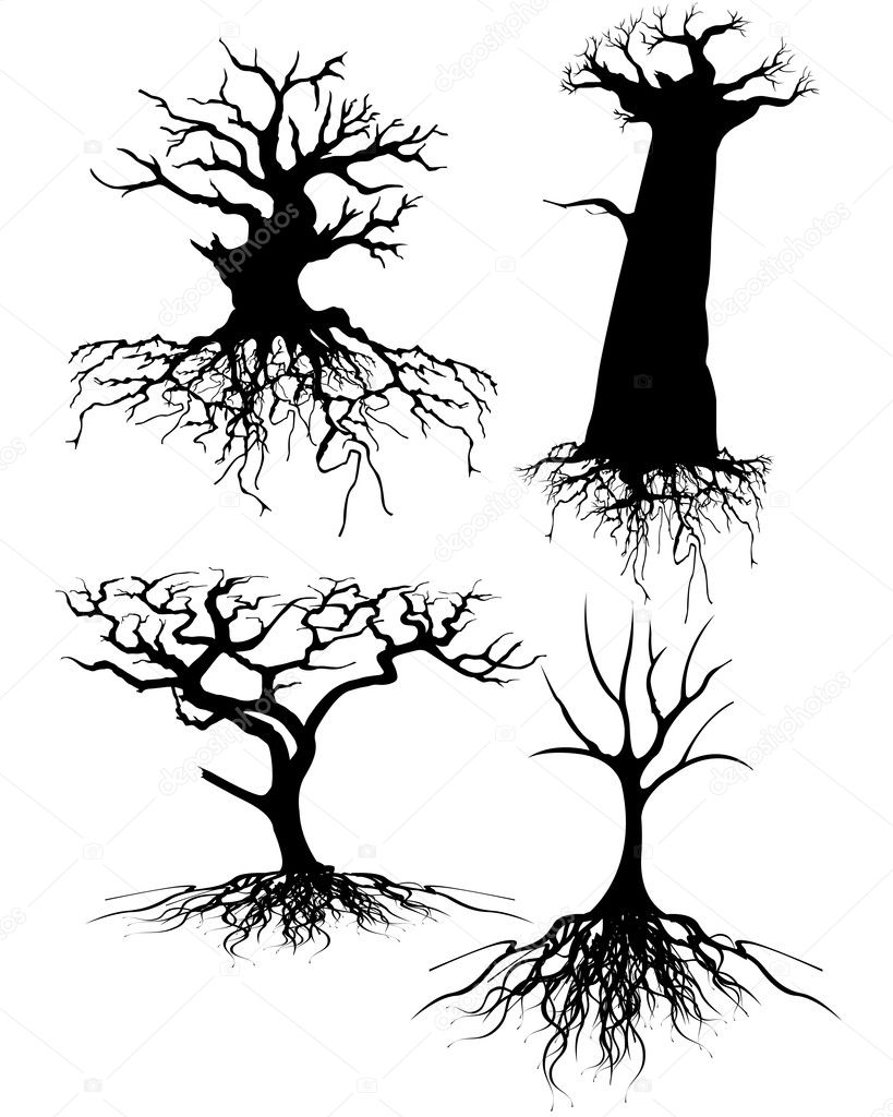 Four different Old tree Silhouettes with roots — Stock