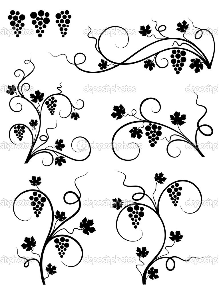 Grape design elements. Vector illustration. — Stock Vector