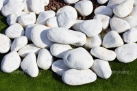 Types Of White Rock Garden Pictures to Pin on Pinterest ...
