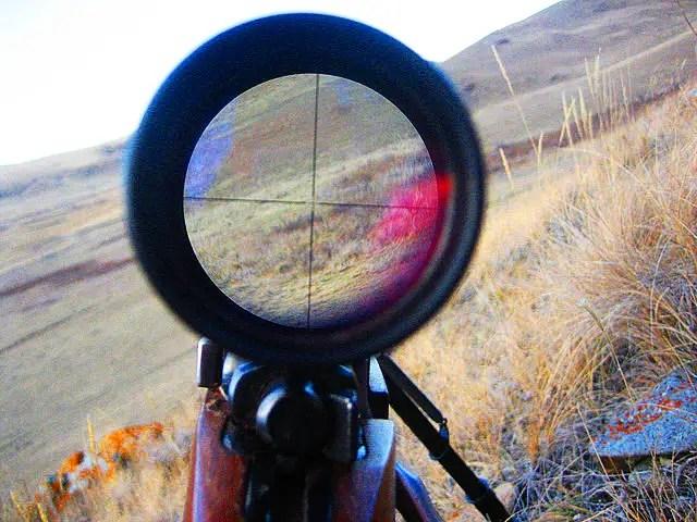 rifle scope sight crosshair
