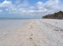 Barefoot Beach Bonita Springs FL