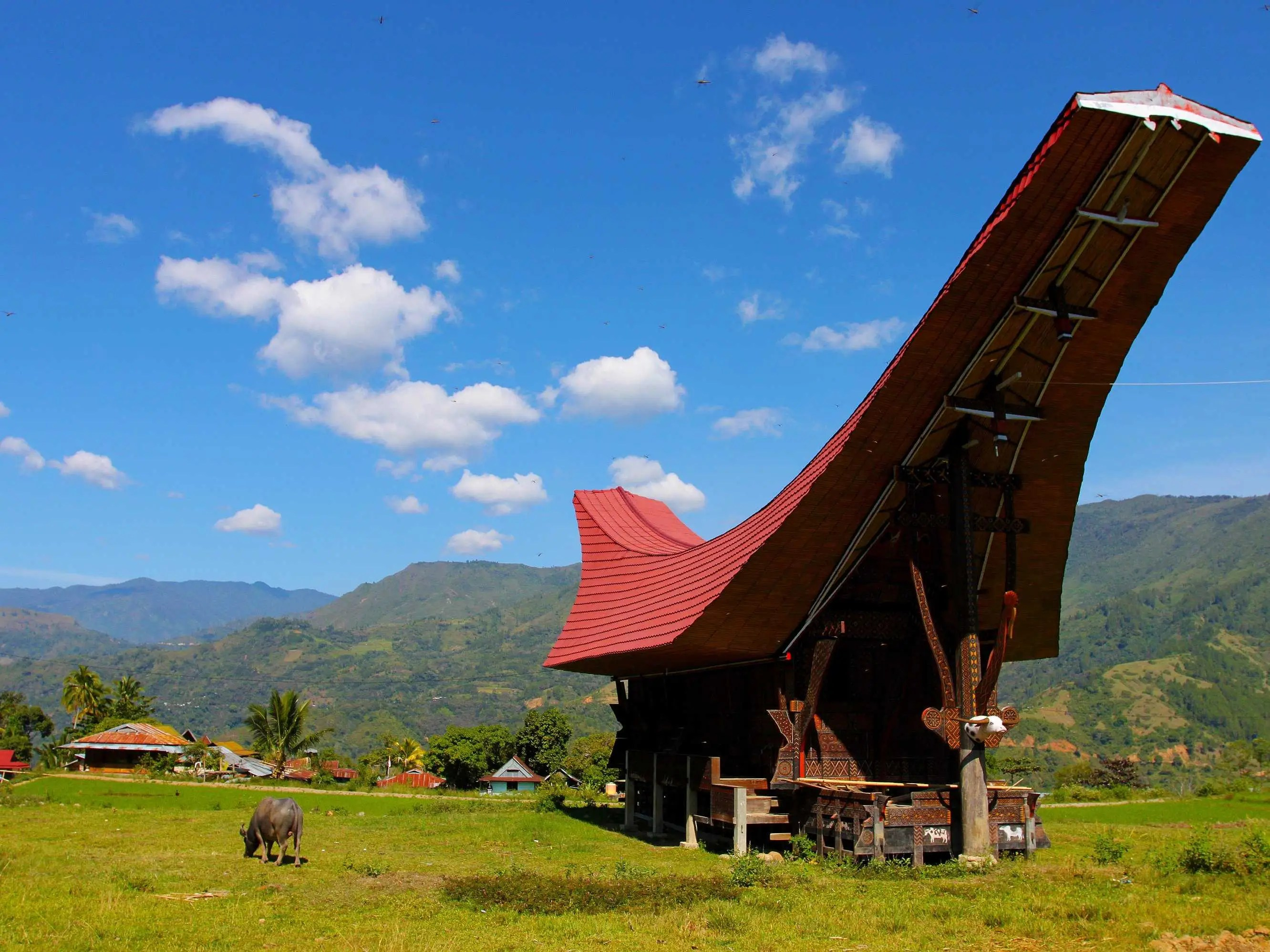 Step off the beaten path and visit the indigenous villages of Tana Toraja, Indonesia.