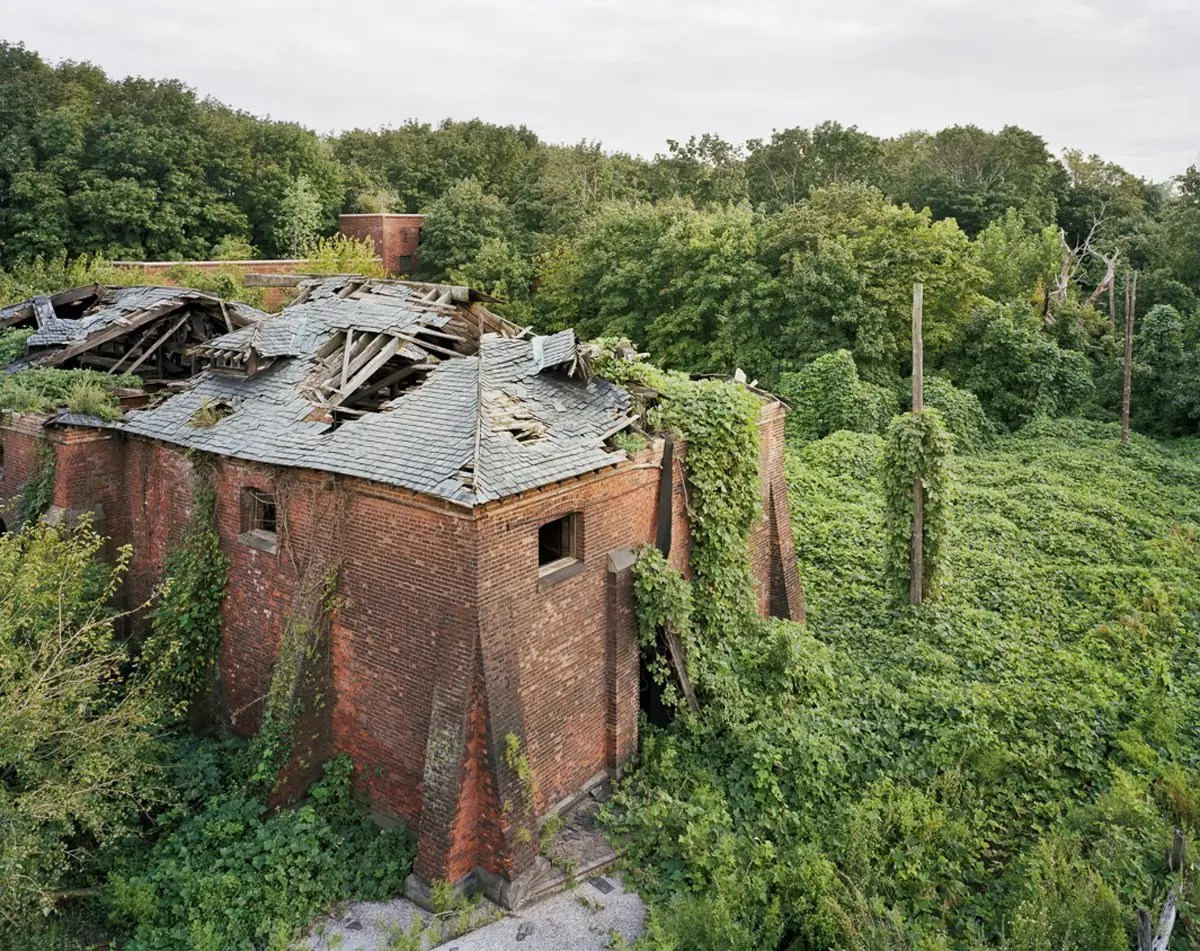 North Brother Island shows what happens to a the world abandoned by humanity.