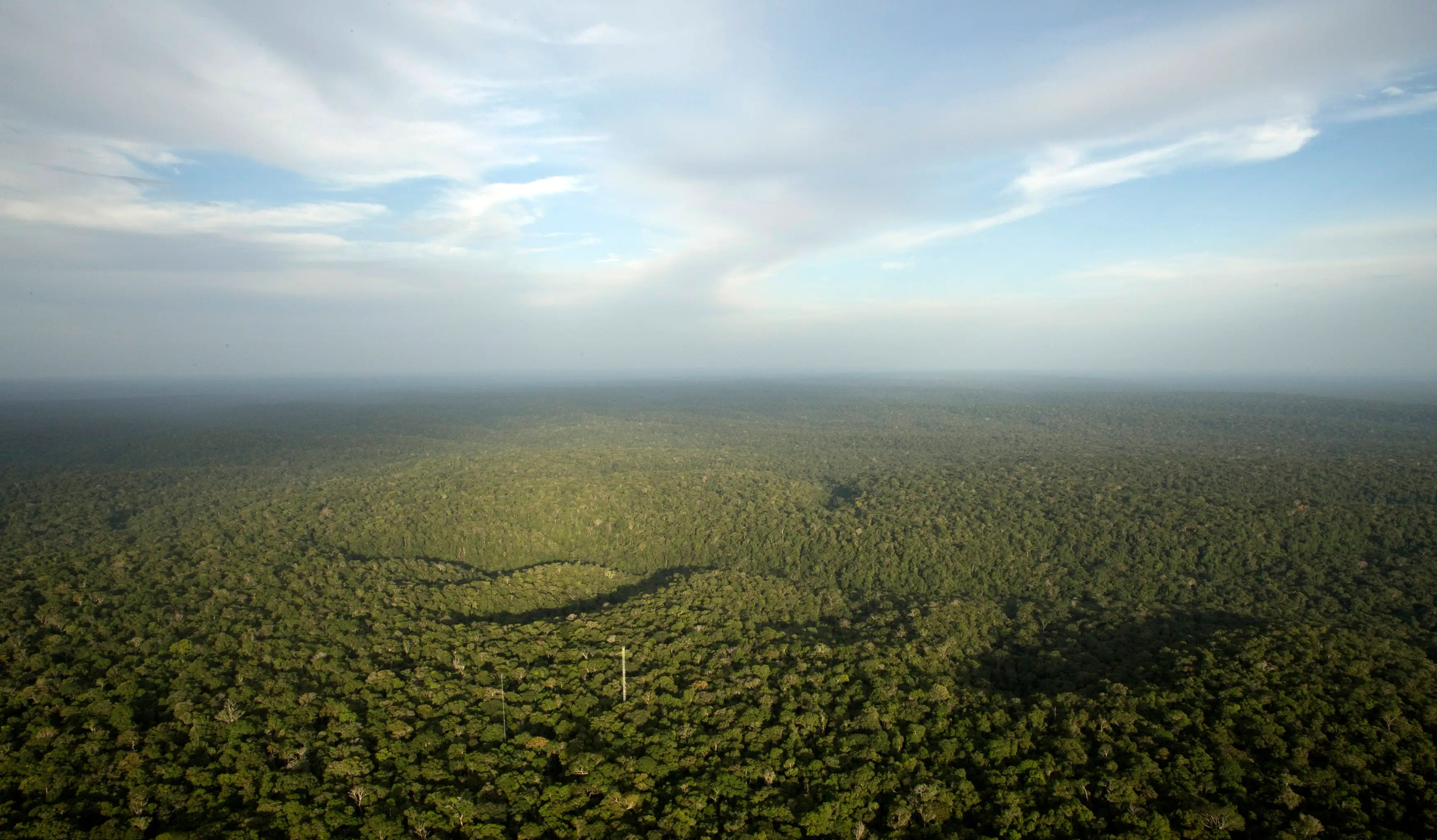 A view from the Amazon Tall Tower Observatory in Brazil.