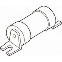 Buy Bussmann EITD32 32 A Low Voltage Fuse BS88 Type Online