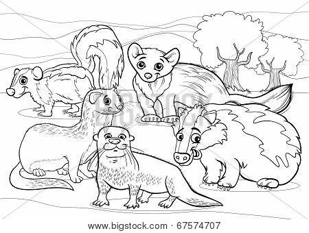 mustelid Stock Photos, Royalty-Free mustelid Images