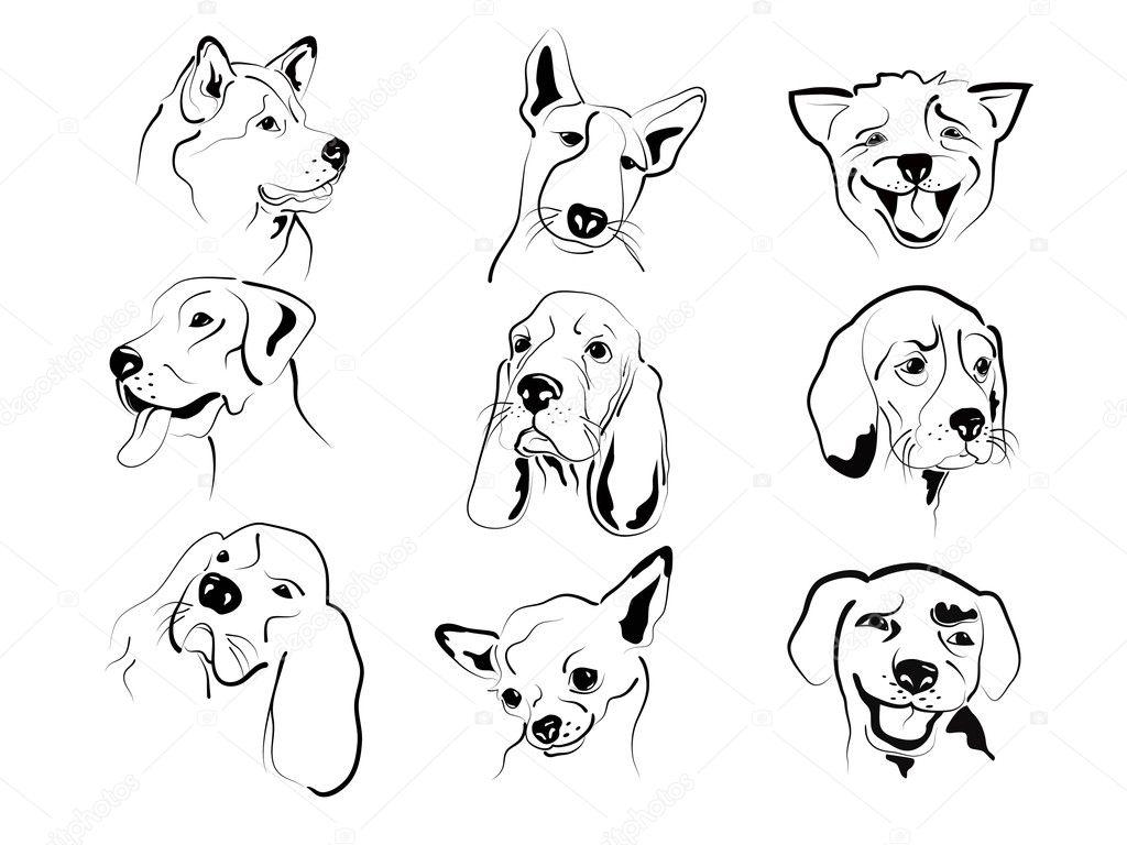Dog Faces