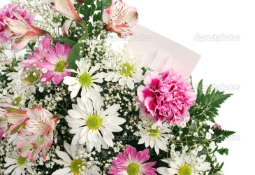 horizontal flower border flowers spring card blank gift lisafx preview depositphotos