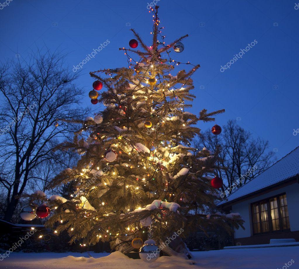 kerstboom met huis buiten  Stockfoto  aporokh 7725349