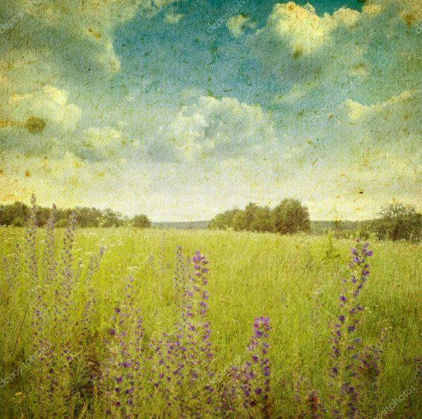 Vintage Landscape Stock Volokhatiuk #9381164