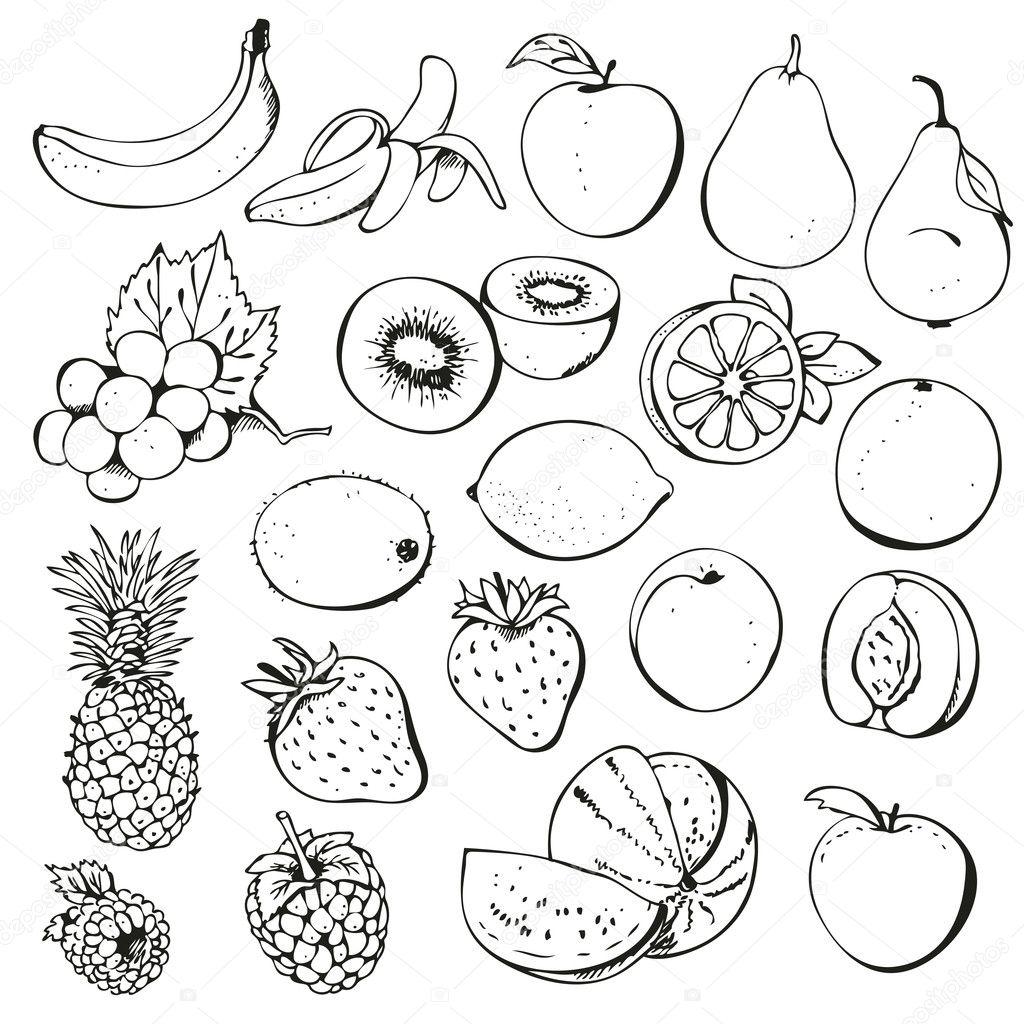 Fruit and berry collection — Stock Vector © fandorina #8958711