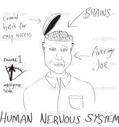 a funny cartoon diagram of a man with his head opening up revealing his brain vector by arenacreative [ 1024 x 1024 Pixel ]