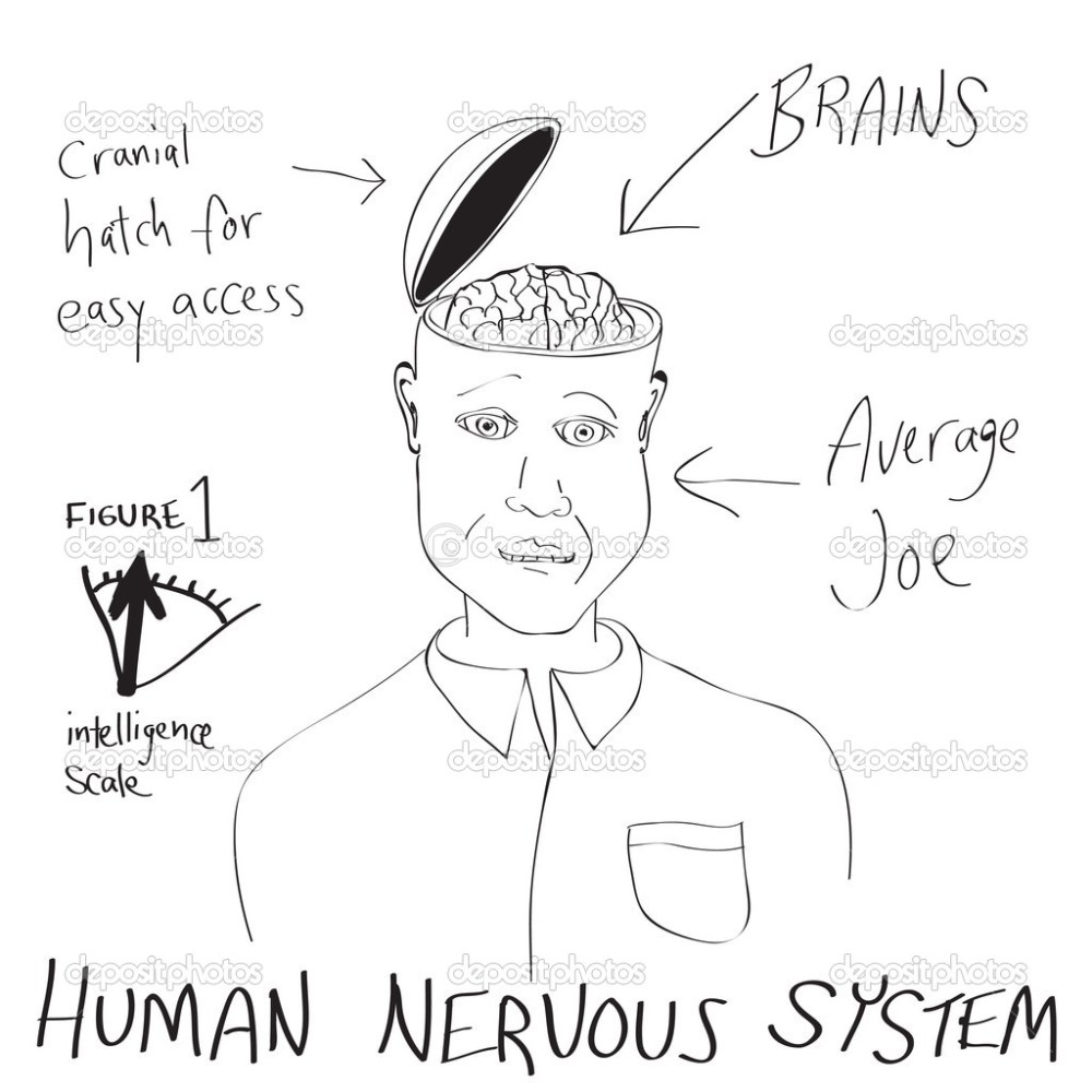 medium resolution of a funny cartoon diagram of a man with his head opening up revealing his brain vector by arenacreative