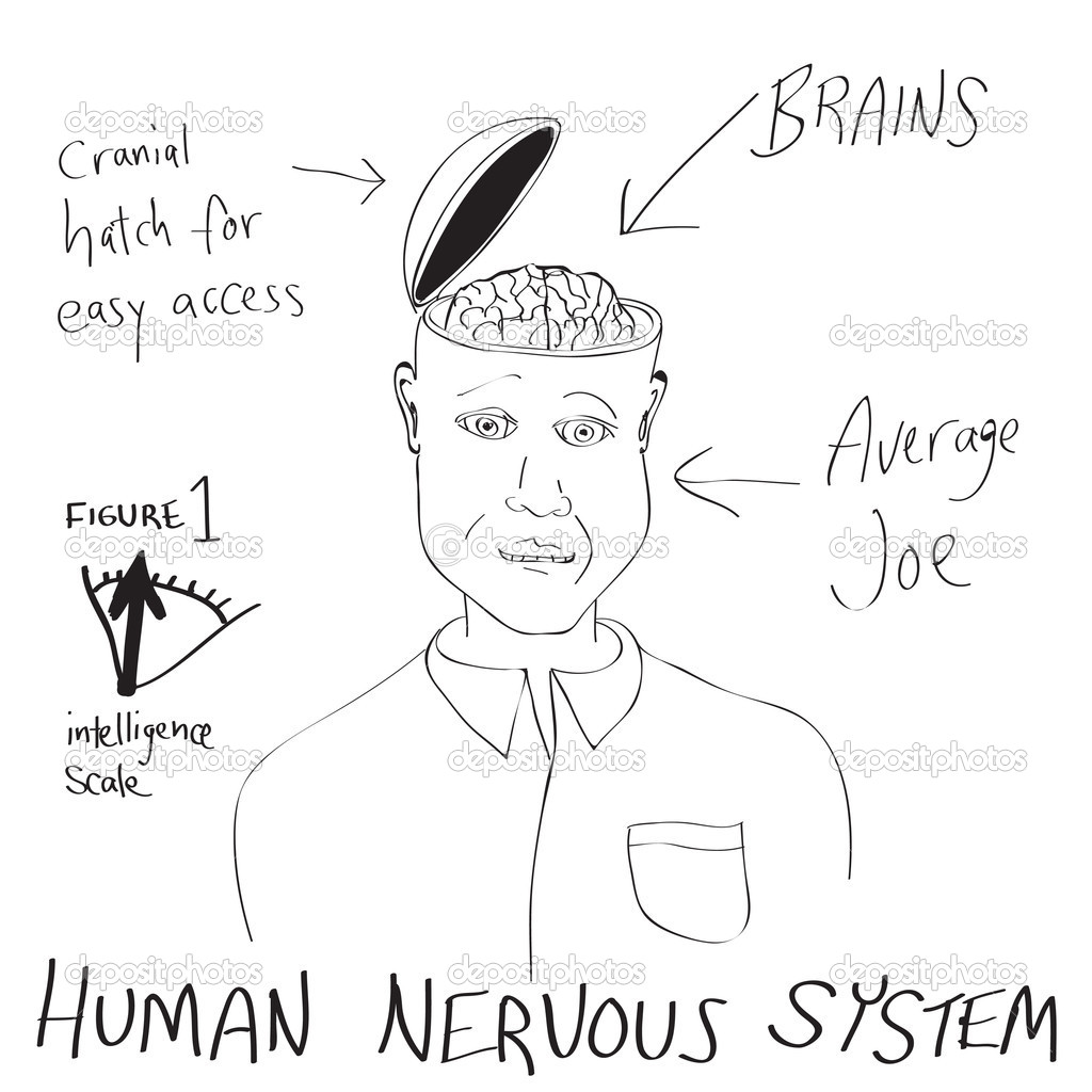 hight resolution of a funny cartoon diagram of a man with his head opening up revealing his brain vector by arenacreative