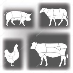 Blank Cow Diagram 1987 Mazda B2000 Wiring Illustration Cuts Of Beef Pics Stock Photos All Sites