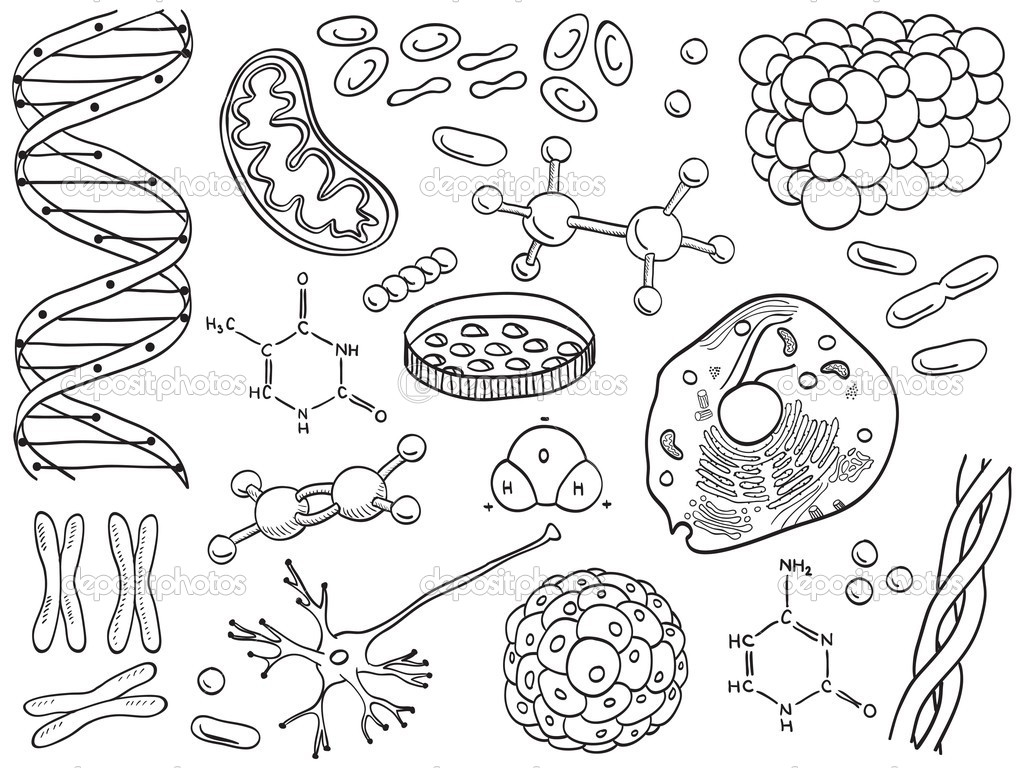Biology and chemistry icons isolated — Stock Vector