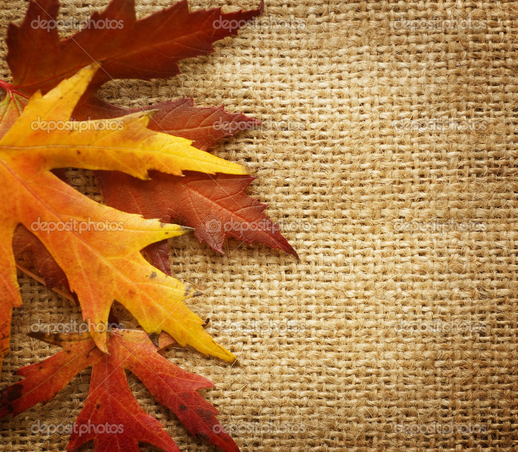 Fall Leaves Nd Burlap Wallpaper Autumn Leaves Border Over Burlap Background Stock Photo