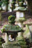 picture of taima-ji  - Japan Mara Stone lantern in garden - JPG