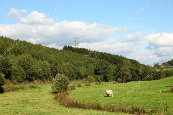 beautiful landscape in siegerland