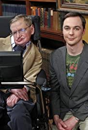 Stephen Hawking Big Bang Theory : stephen, hawking, theory, Subtitles, Theory