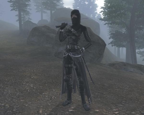 Oblivion Assassin Armor - Year of Clean Water