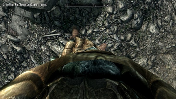 Skyrim First Person View - Year of Clean Water