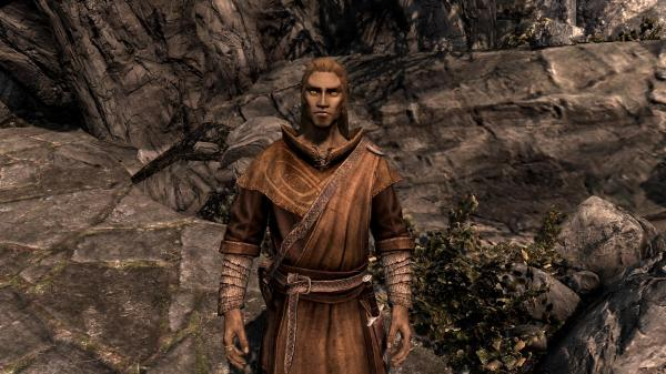 Multiple Followers Skyrim Warring States Mod - Year of Clean Water