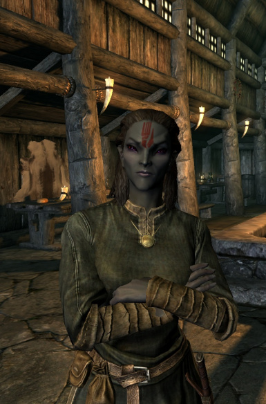 Amulet Of Kings Skyrim Mod : amulet, kings, skyrim, Alb084, Immersive, Followers, Skyrim, Nexus, Community