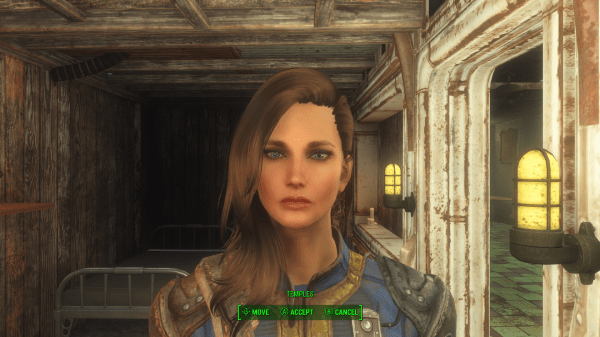 Presets Nexus Fallout 4
