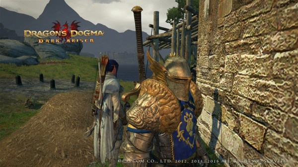 20 Dragons Dogma Armor Mods Pictures And Ideas On Meta Networks