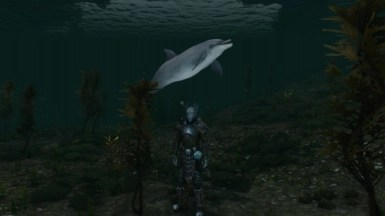 sink or swim at skyrim special edition