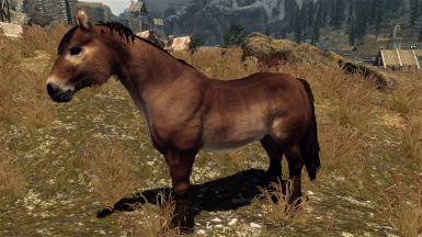 realistic horse breeds # 0