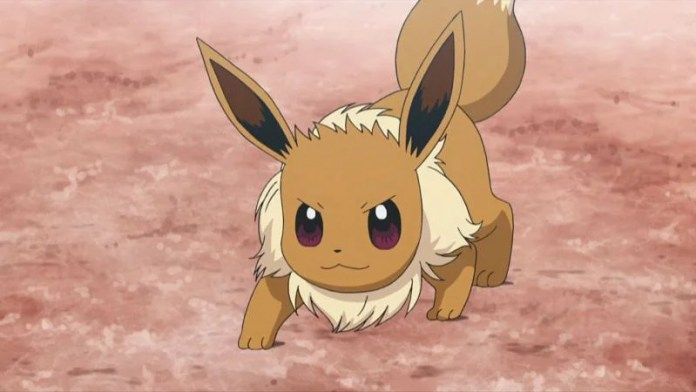 Image result for eevee pokemon anime