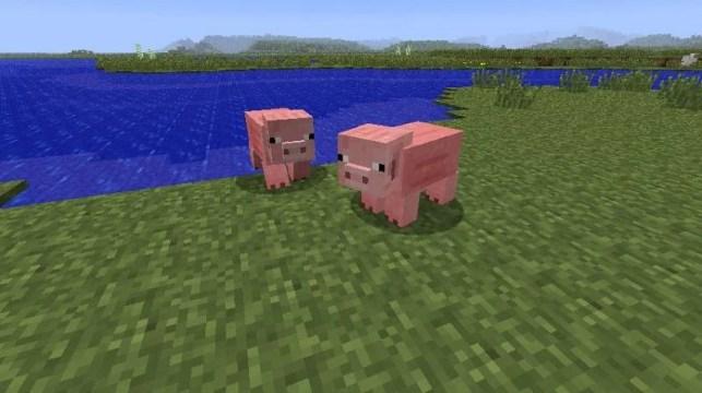 Pigs in Minecraft (Photo via Minecraft Forum)