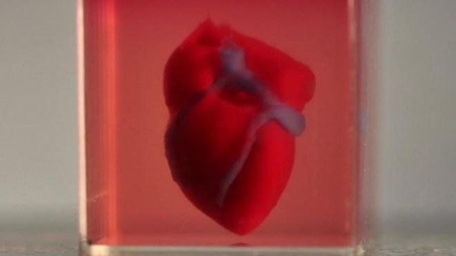 Corazón impreso en 3D.