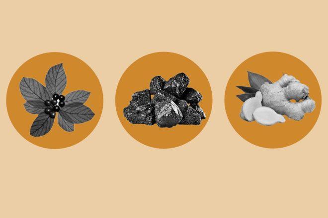 Cáscara sagrada, carbón vegetal y jengibre tienen propiedades beneficiosas para la salud digestiva.
